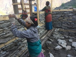 Dhading, Bina Limbu. Trained women masons at work for house reconstruction. There is a severe shortage of skilled labour as men have gone for foreign employment. In this scenario, some women trained by National Society for Earthquake Technology (NSET) have been stepping up to work as masons. At first, women masons were frowned upon by the villagers due to patriarchal beliefs that women cannot do heavy labour but gradually they have become more accepting of them.